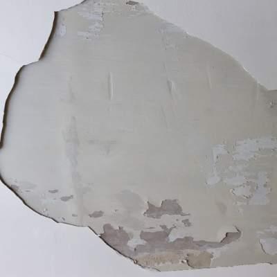 plaster repair Glasgow - Bell & Higgins