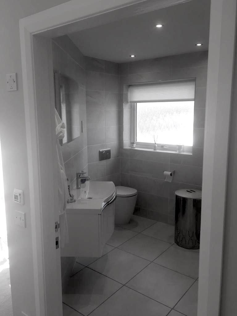 Garage Conversion, Inc. New Bathroom - Bell & Higgins - Garage Conversions Paisley